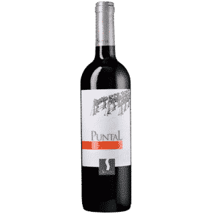 Carmenere Puntal Sutil Chile